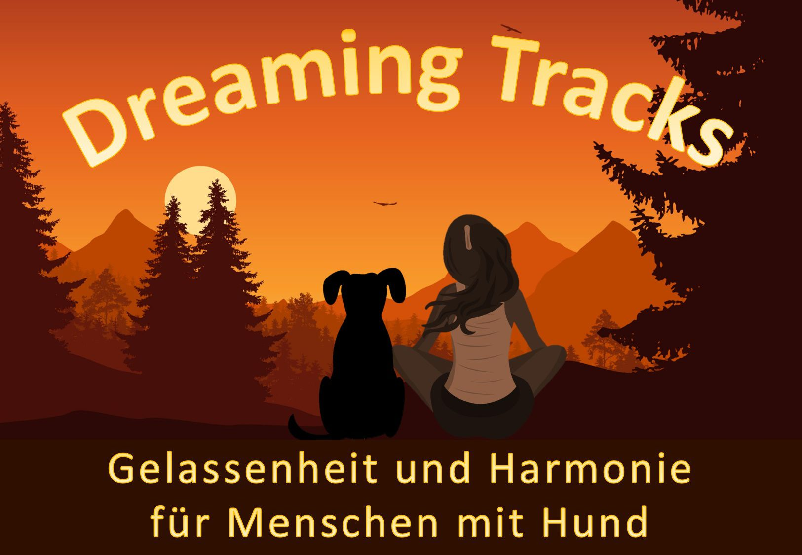 DreamingTracks